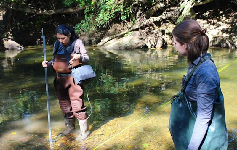 Brentwood and Ravenwood High Students Take Environmental Science Outside
